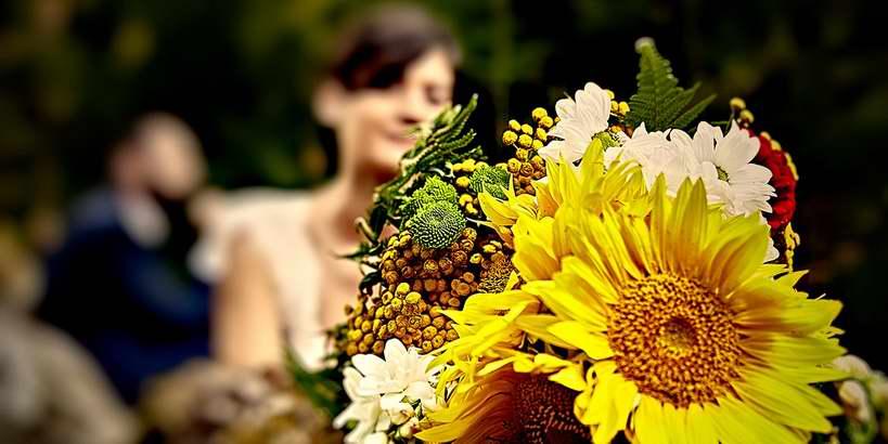 fotograffotograf de nunti brasov de nunti brasov