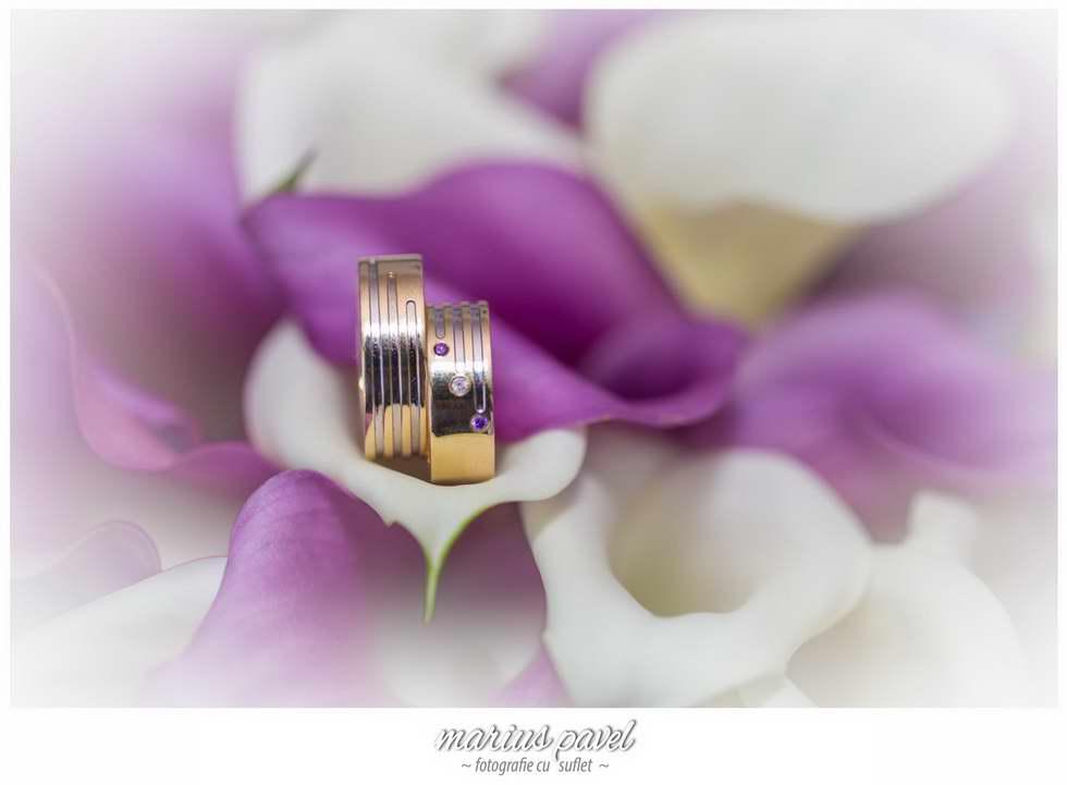 Fotografii Nunta Pensiunea Floarea Soarelui Brasov