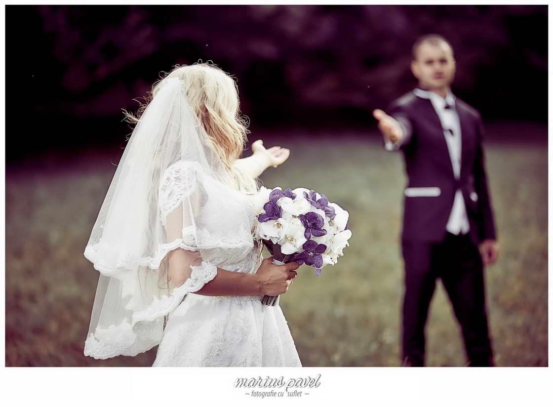 Fotografii nunta cu cai