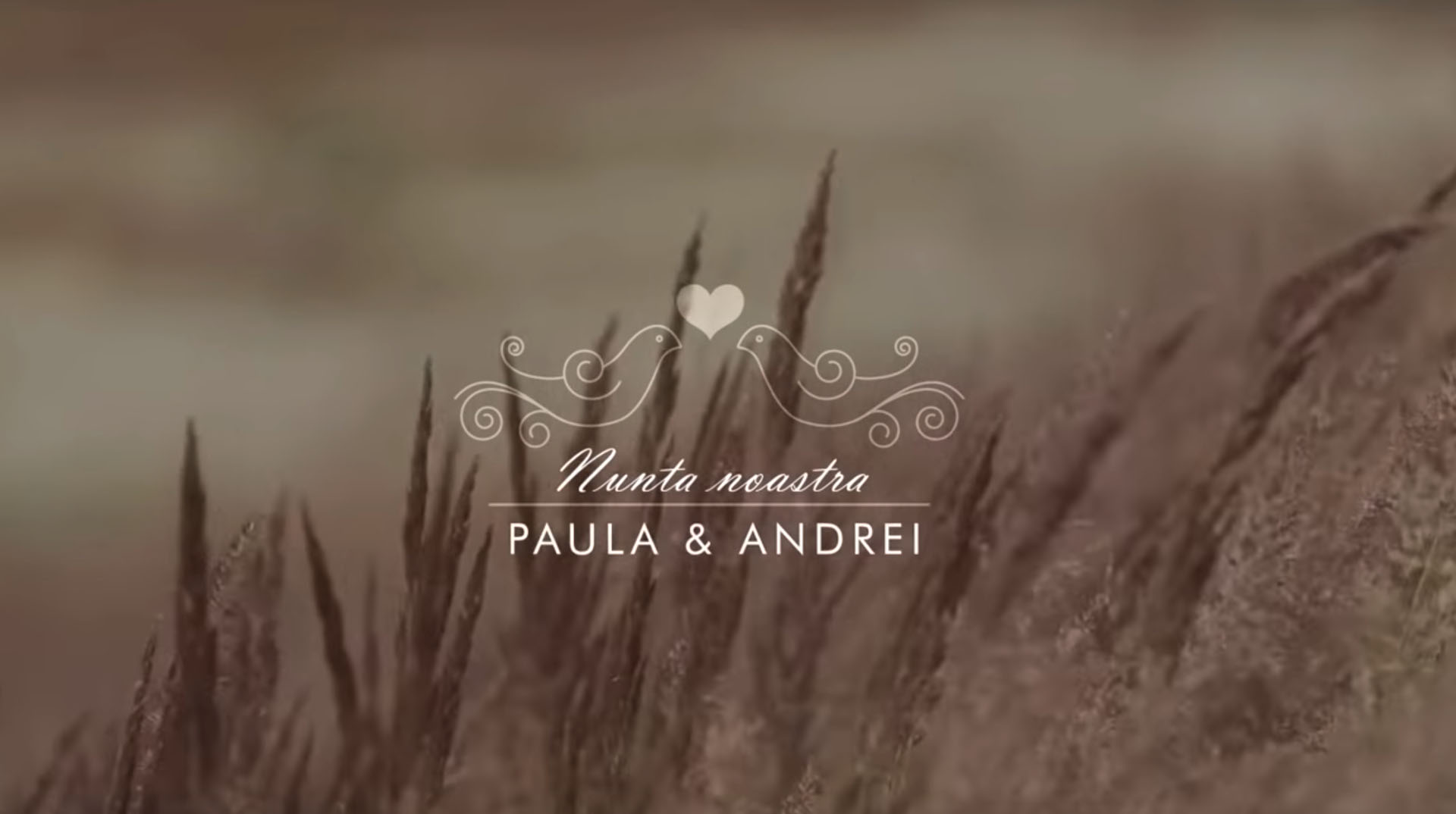 Video nunta Codlea