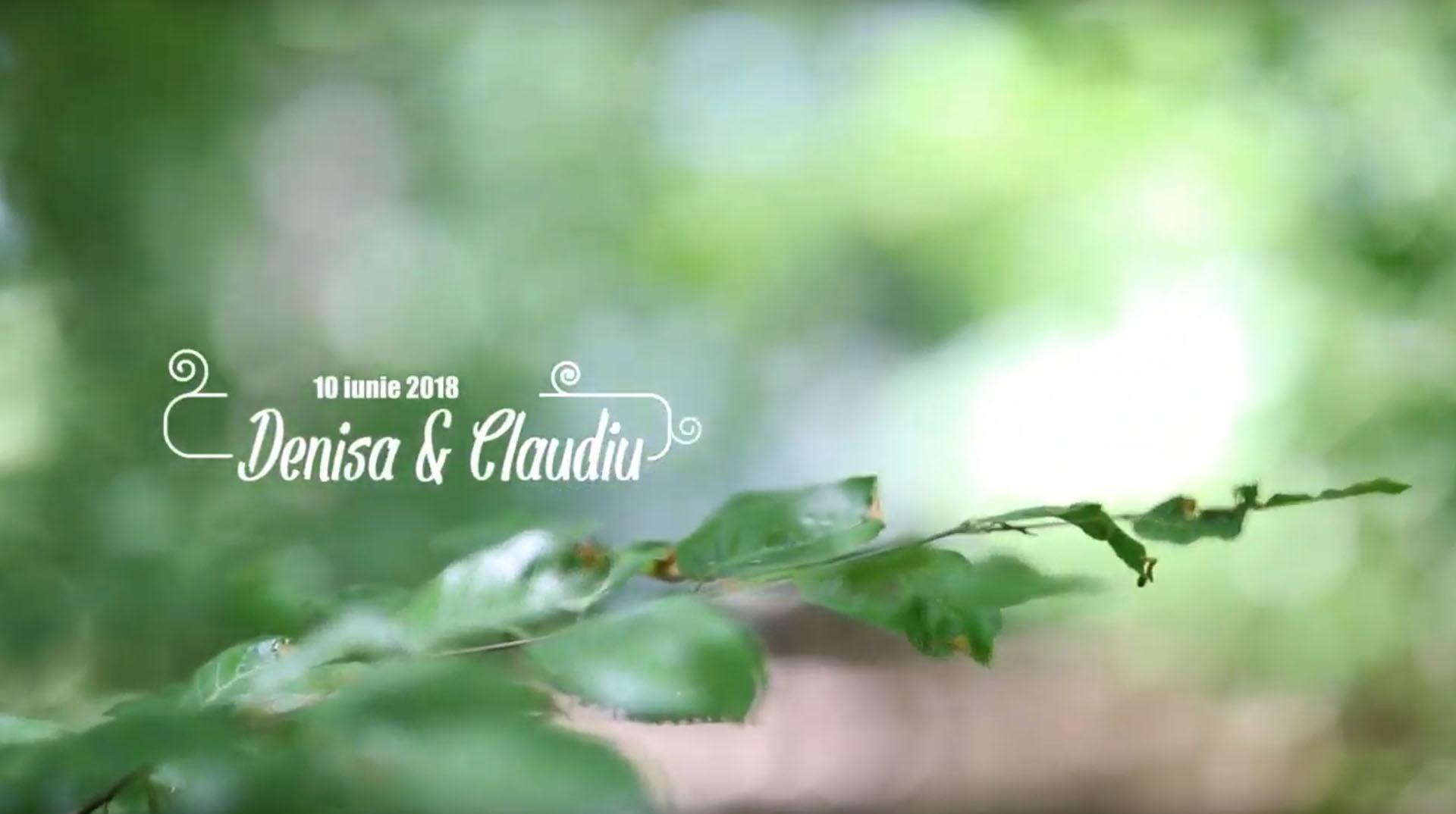 videoclip nunta conacul heldsdorf